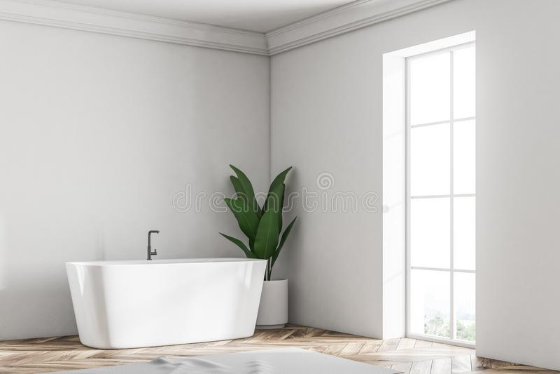 Белые угол, ушат и завод ванной комнаты просторной квартиры иллюстрация вектора