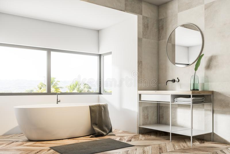 Белые угол, ушат и раковина ванной комнаты иллюстрация вектора