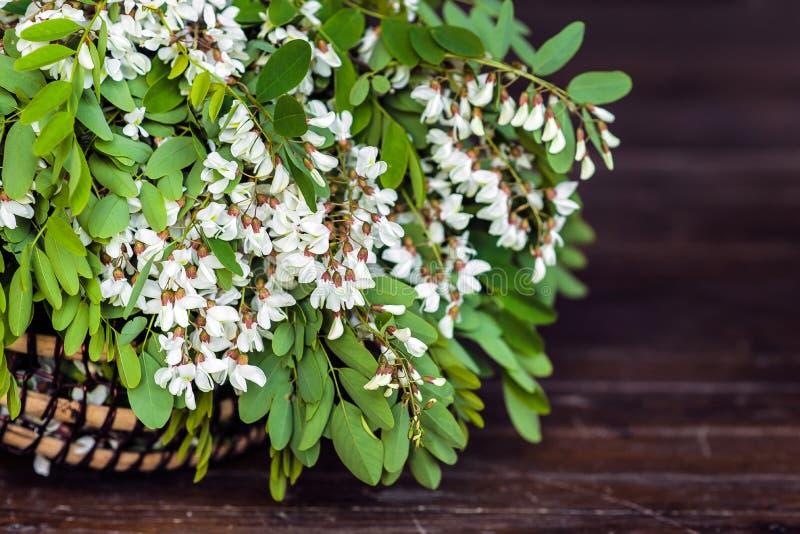 Белые цветки акации с листьями лежат в плетеной корзине стоковое фото
