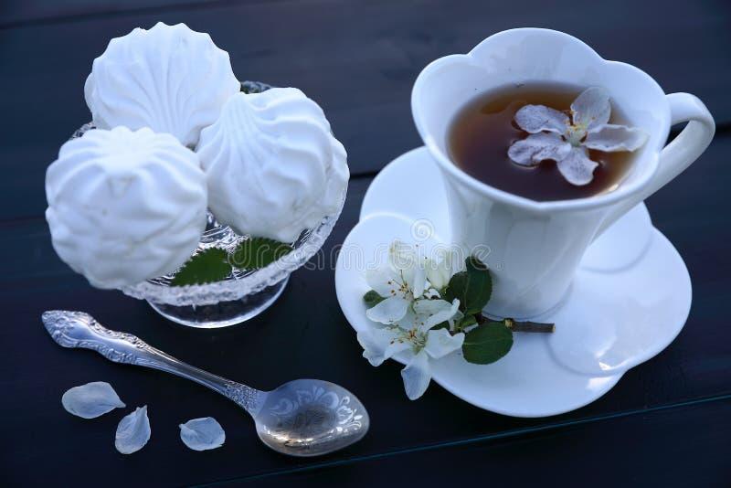 Белые чашка чаю и зефир стоковые фото