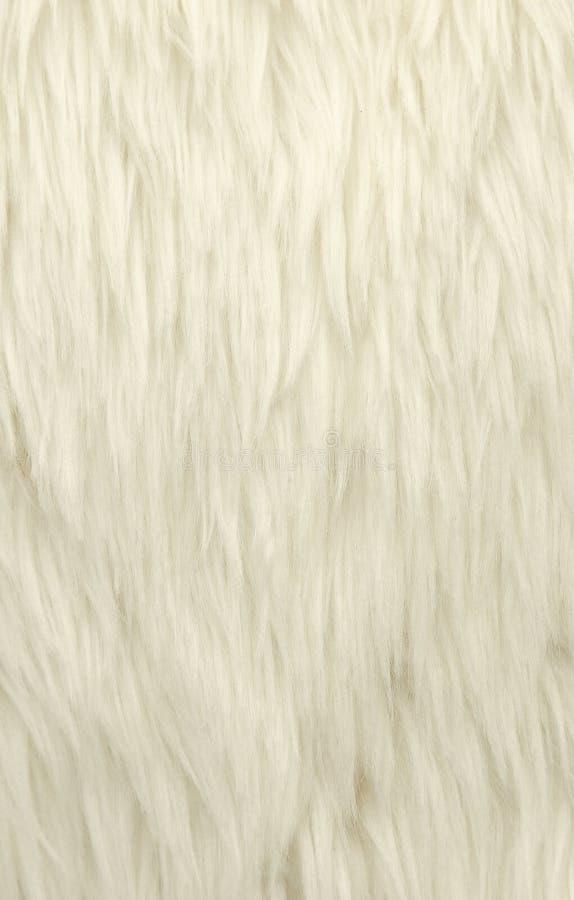 белые шерсти стоковое фото rf