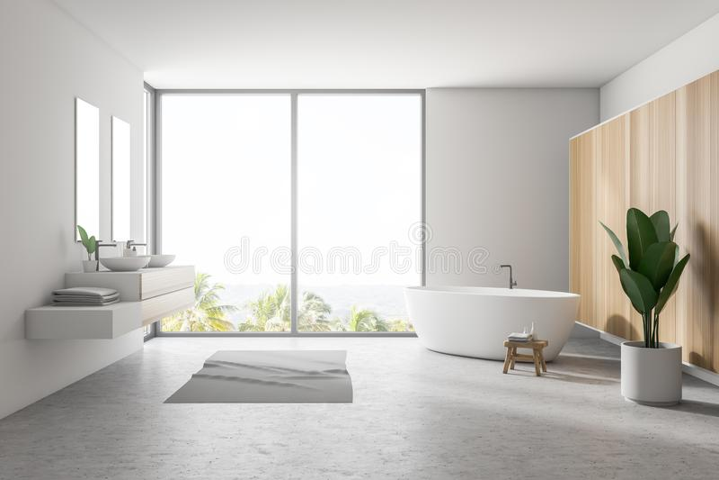 Белый большой интерьер ванной комнаты, ушат и двойная раковина бесплатная иллюстрация
