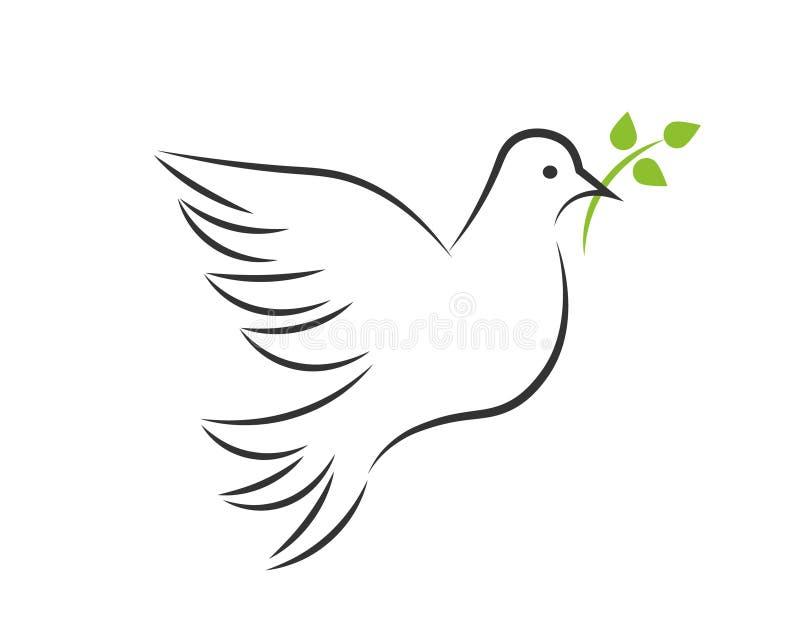 Белый голубь с ветвью иллюстрация вектора