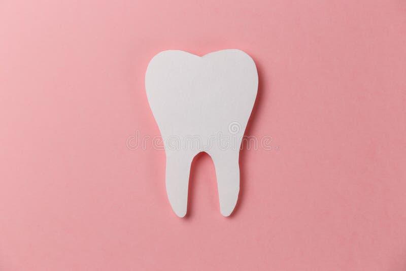 Белый зуб на розовой предпосылке стоковое фото rf