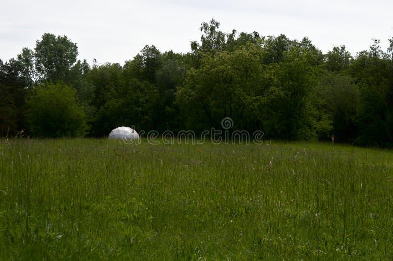 Белый купол на луге стоковая фотография rf