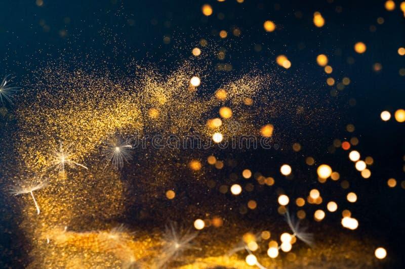Белый одуванчик цветорасположений на черной предпосылке с золотым сверкнает Запачканное влияние стоковое фото