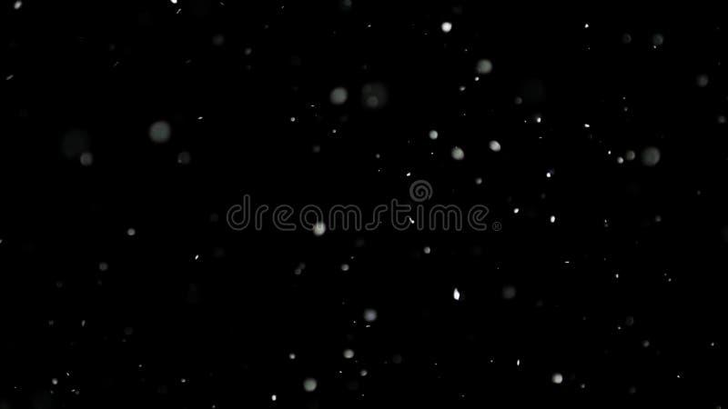Белый снег падая на изолированную черную предпосылку стоковое фото