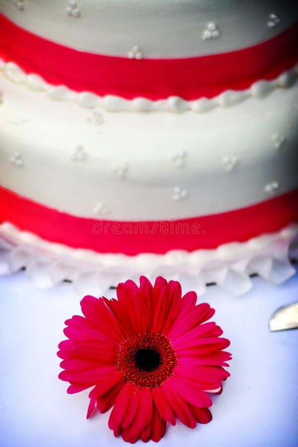 Белый торт венчания с розовым уравновешиванием Стоковая Фотография