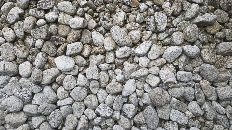 Белый утес был взбрызнут на земле которая японский каменный стиль сада стоковые изображения rf
