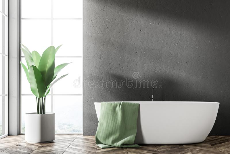 Белый ушат в черном интерьере ванной комнаты бесплатная иллюстрация