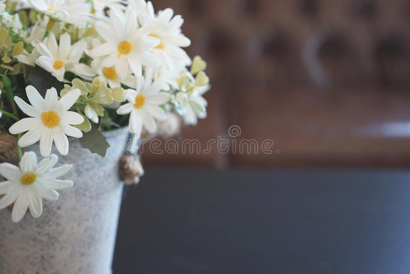 Белый цветок в цветочном горшке украшенном на таблице с винтажной предпосылкой софы стоковое изображение