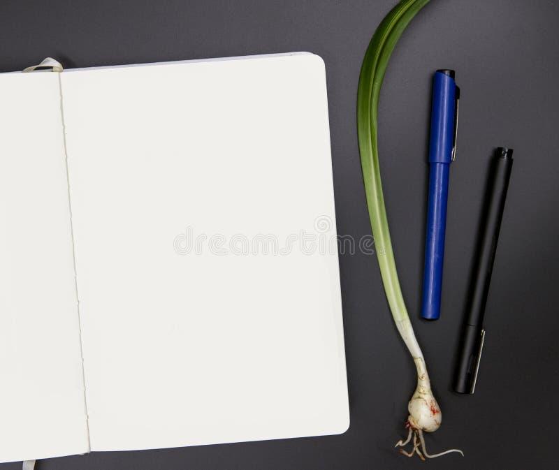 Белый sketchbook на черной таблице Фото взгляда сверху рабочего места художника Пустая страница положения завода sketchpad и лили стоковое изображение rf