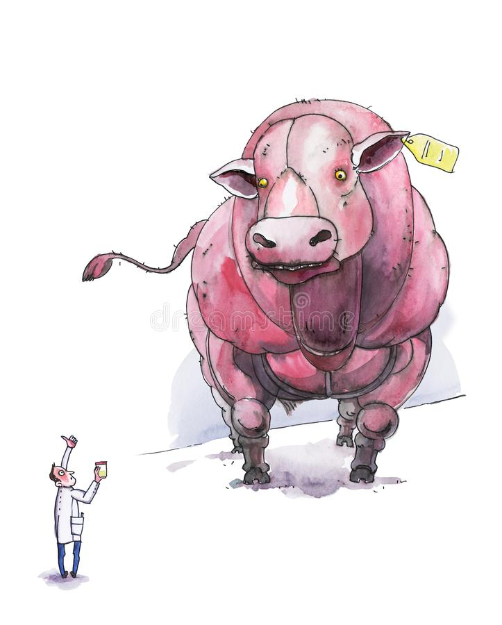 Бельгийская голубая корова Ассистент лаборатории с пробой мочи для давать допинг Юмористическая иллюстрация Акварель r иллюстрация штока