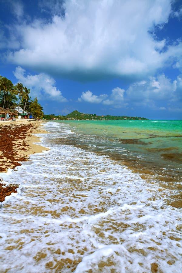 Береговая линия песчаный пляж во время прилива моря стоковое фото rf