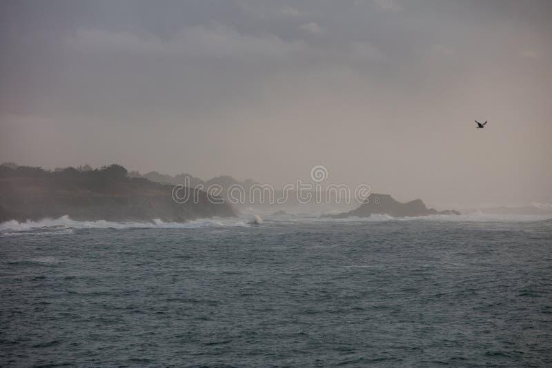 Береговая линия Mendocino в северной калифорния стоковые фотографии rf