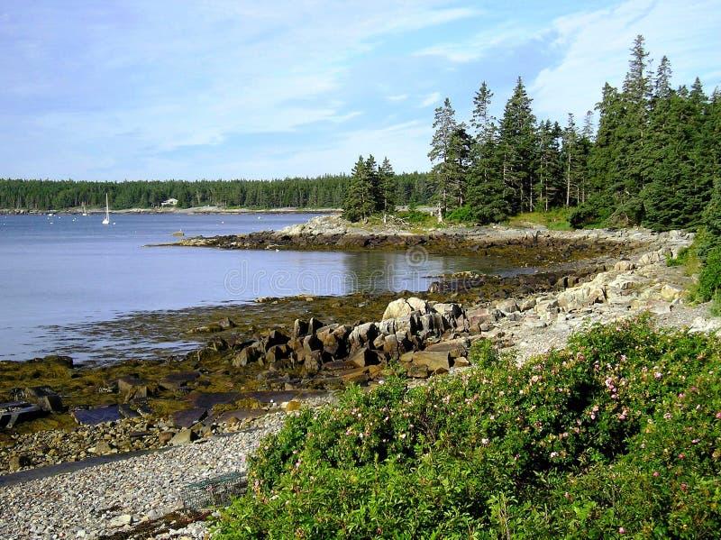 береговая линия Мейн стоковое фото rf