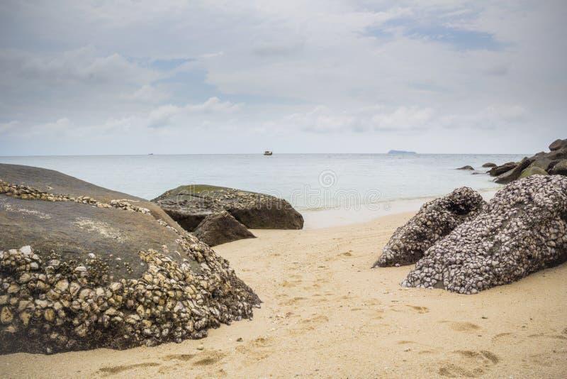 Береговая порода взгляда вполне пляжа Индонезии Pandang раковины стоковые изображения