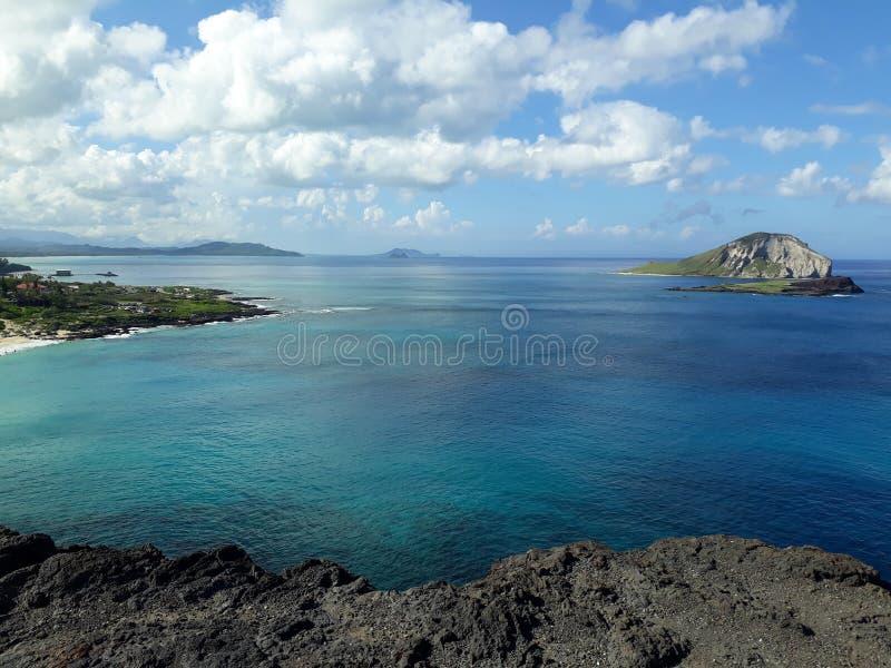 Берег Гаваи стоковое изображение