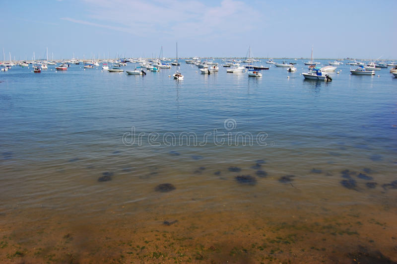 берег моря massachusetts plymouth стоковое фото rf