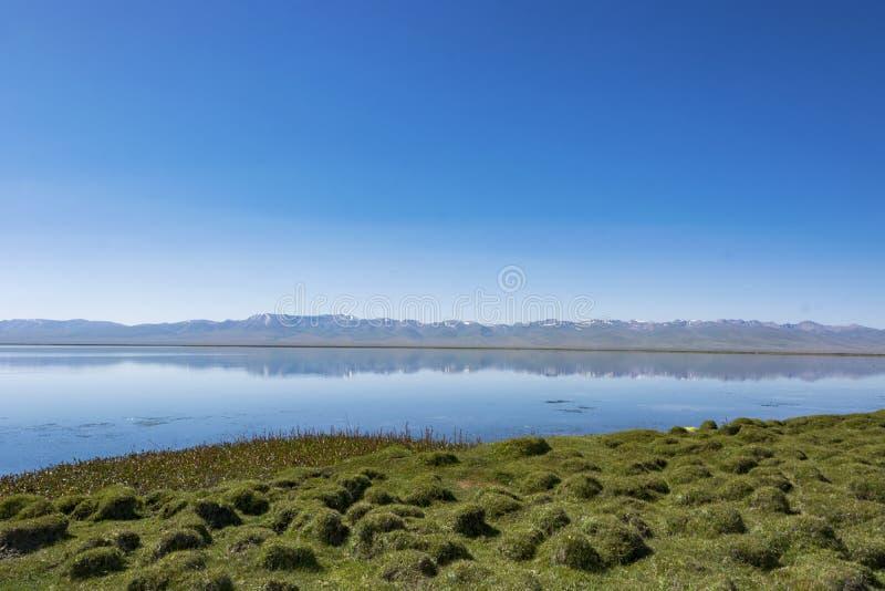 Берег озера в погоде раннего утра, тихих и windless стоковые фотографии rf
