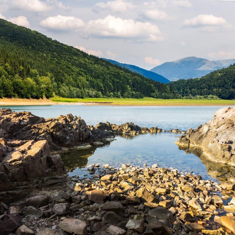 Берег озера с камнями приближает к сосновому лесу на горе стоковые изображения