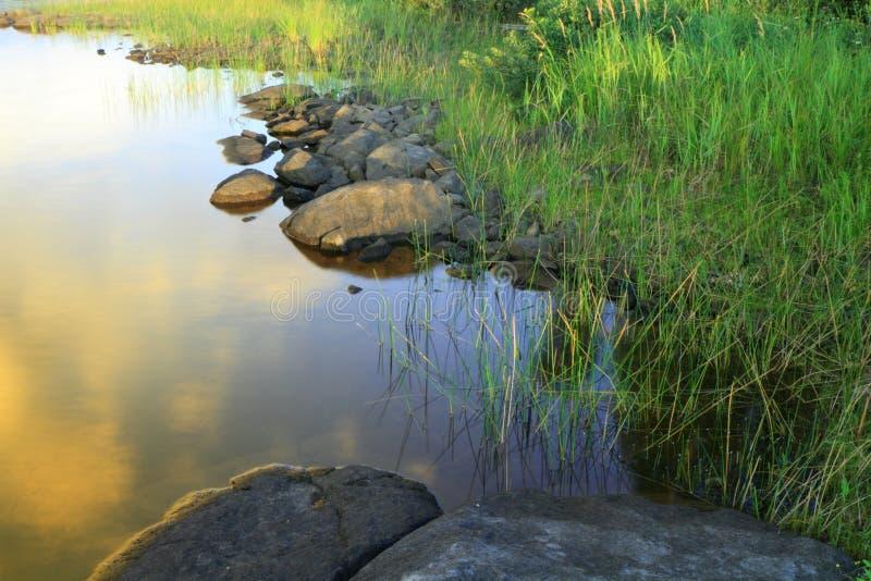 берег озера части стоковые изображения rf
