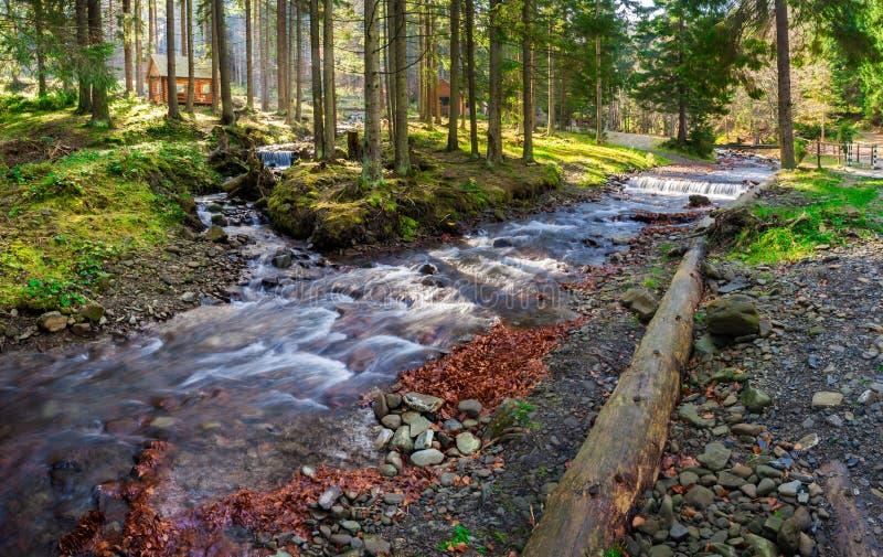 Берег реки в национальном парке с поздно внутри осенью стоковая фотография