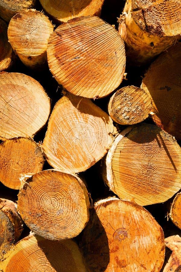 Берег реки Река Колумбия завода по обработке пиломатериала журнала тимберса деревянный стоковые фото