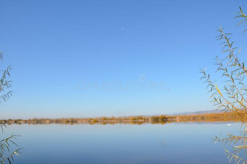 Берег реки с ясным небом стоковые фотографии rf
