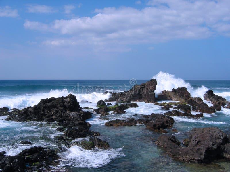 берег maui стоковое изображение rf