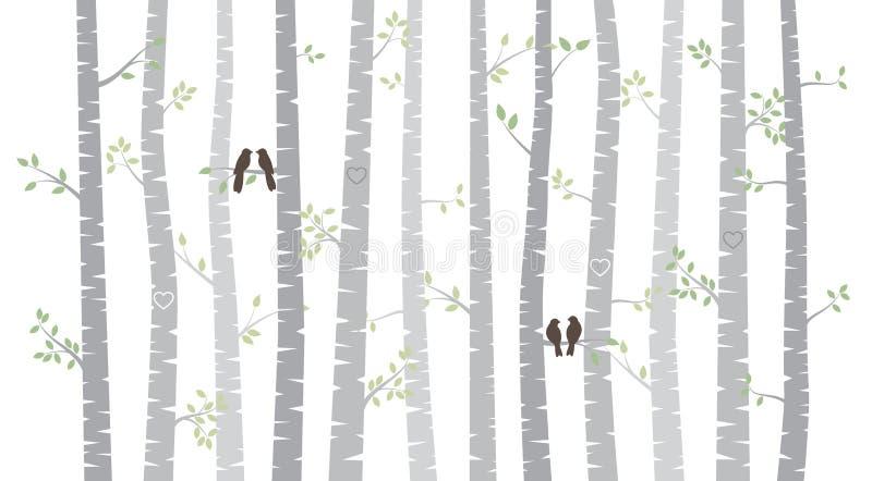 Береза вектора или деревья Aspen с листьями осени и птицами влюбленности иллюстрация штока