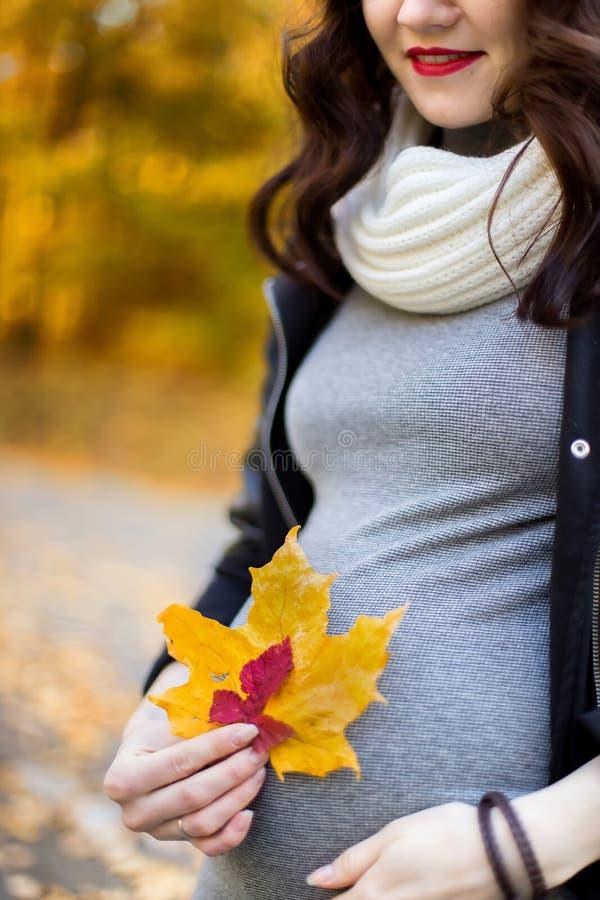 Беременная девушка между осенним ландшафтом стоковое изображение rf