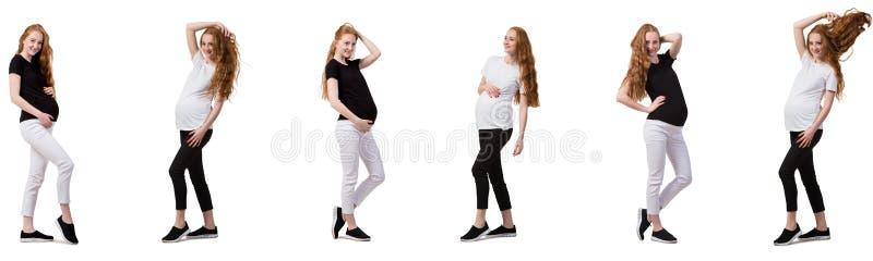 Беременная женщина в составном изображении изолированная на белизне стоковое изображение rf