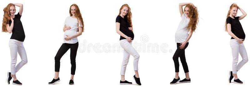 Беременная женщина в составном изображении на белизне стоковое изображение