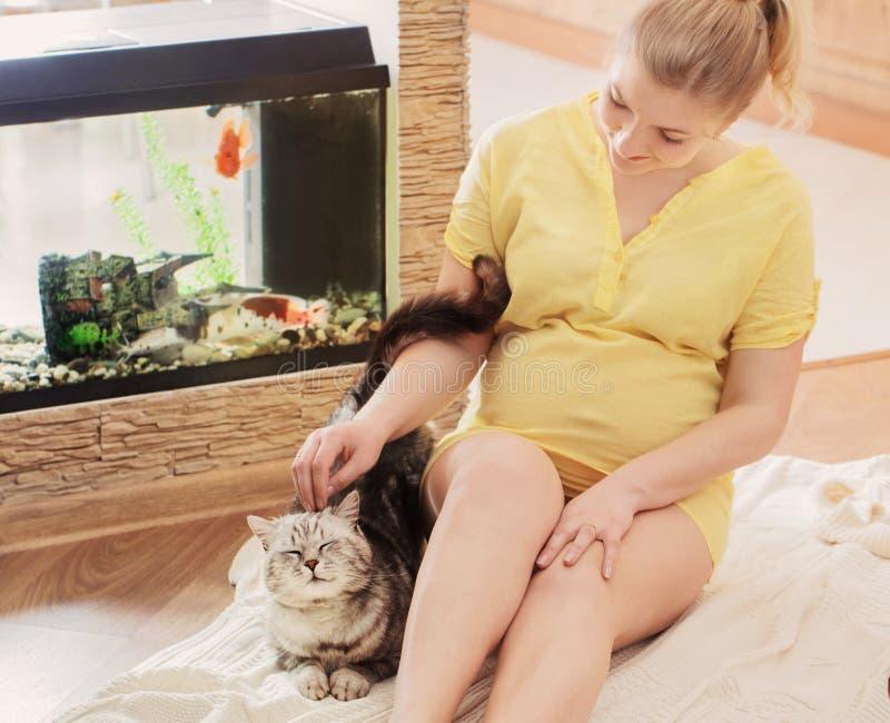 беременная женщина кота счастливая стоковое фото