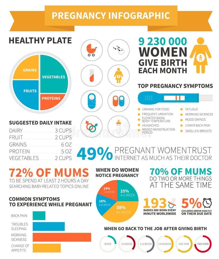 Беременность infographic иллюстрация вектора