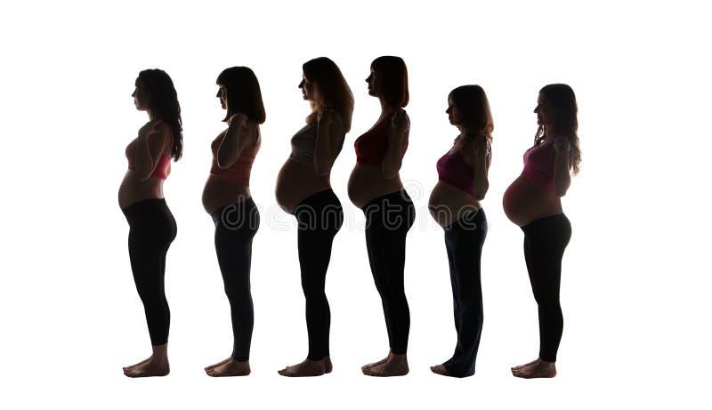 Беременные женщины в взгляде со стороны Силуэт группы стоковые фотографии rf