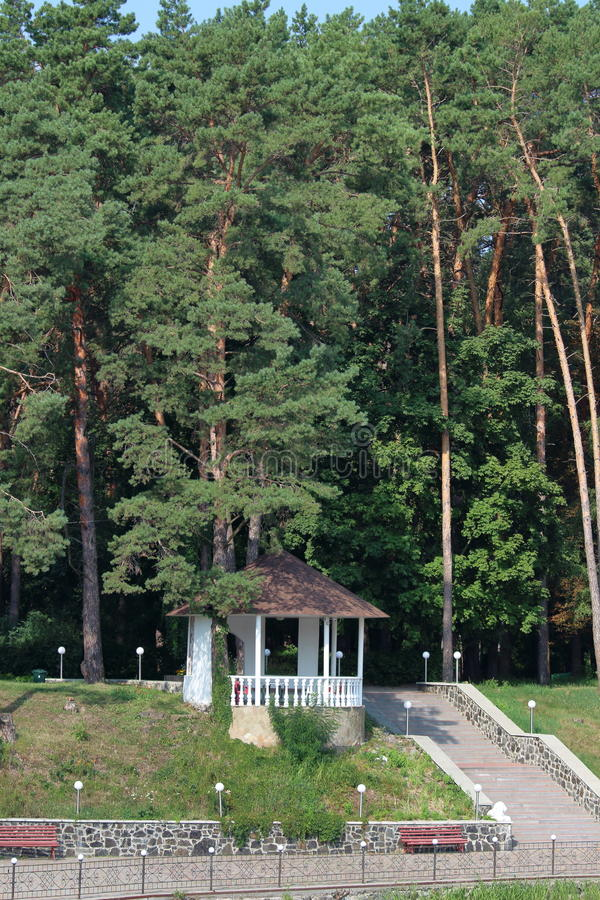Беседка в лесе стоковые изображения rf
