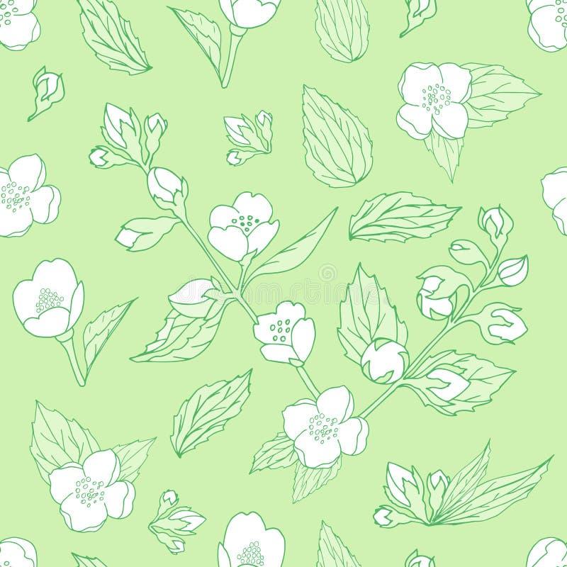 бесконечная текстура с цветами и листьями жасмин на светло-зеленом фон иллюстрация вектора