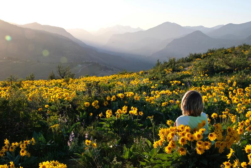 Беспечальная женщина лежа на луге с солнцем цветет наслаждающся восходом солнца над горами и ослабляющ стоковые фотографии rf