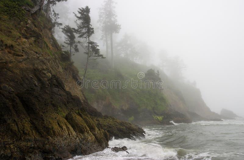 бечевник тумана скалы унылый Тихий океан утесистый стоковые фото