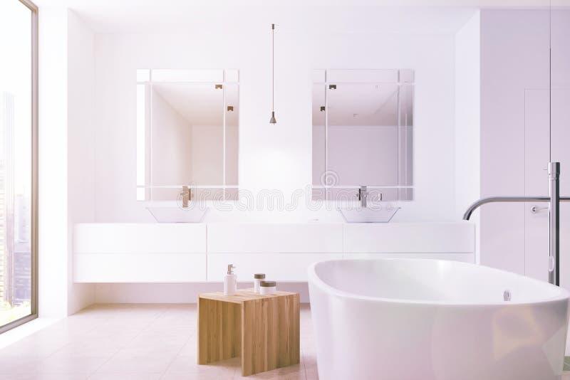Белая ванная комната, ушат, двойная тонизированная раковина бесплатная иллюстрация