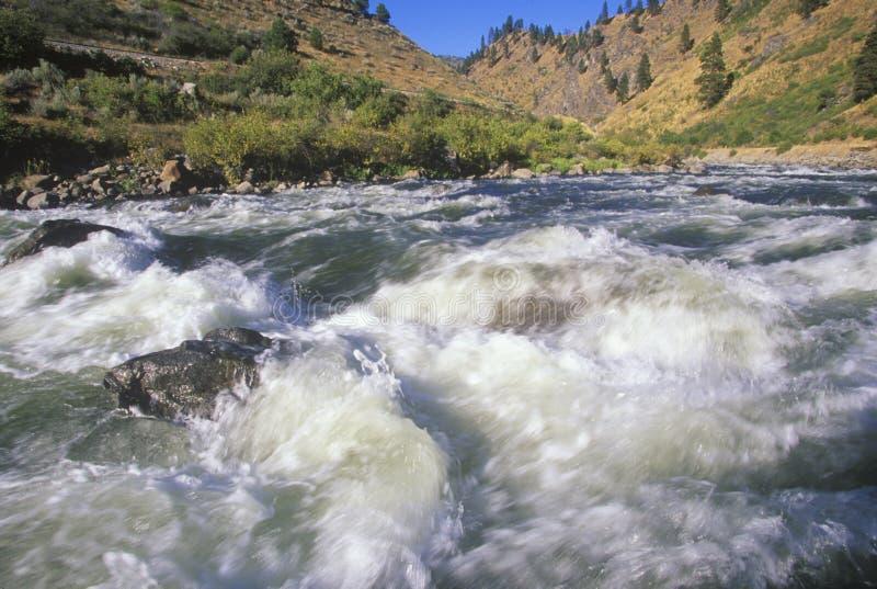 Белая вода, река Payette, Айдахо стоковые изображения