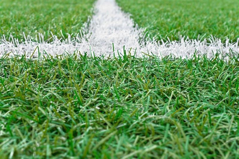 Белая линия маркировки на футбольном поле стоковое фото rf