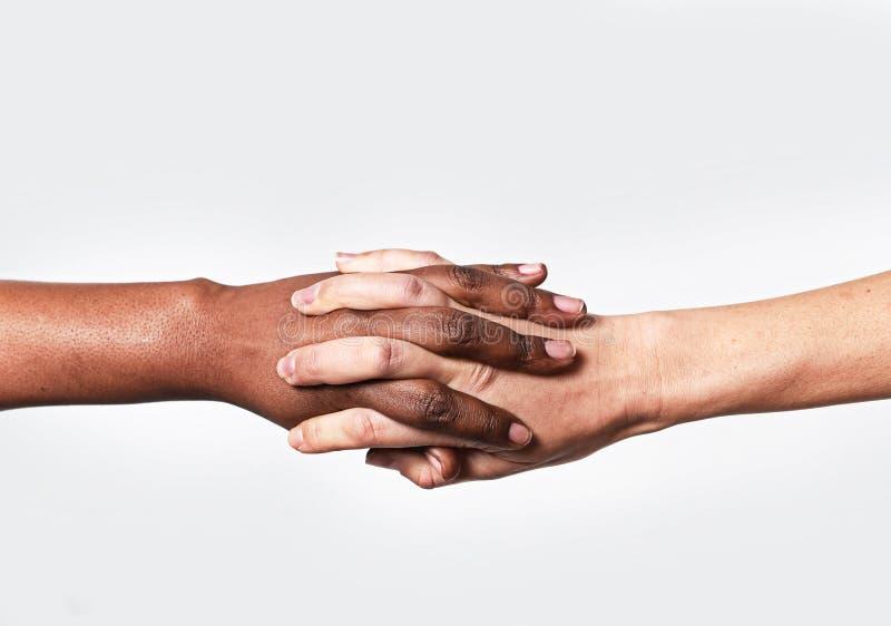 Белая кавказская женская рука и черный афроамериканец держа разнообразие мира пальцев любят стоковое изображение rf