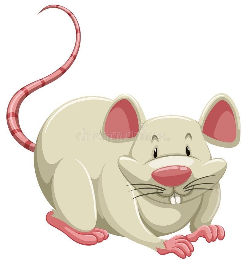 Белая мышь иллюстрация штока