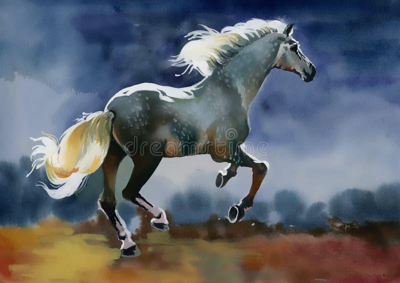 Белая лошадь иллюстрация штока