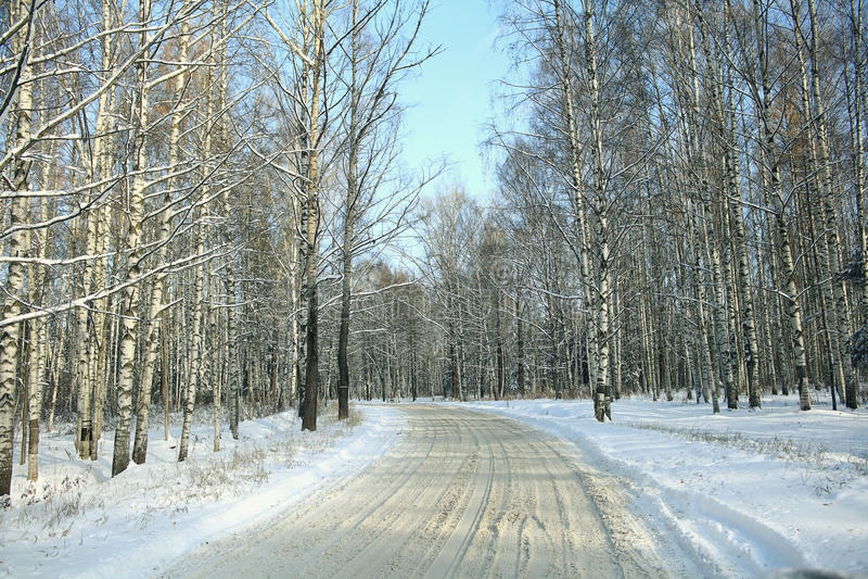 Белая покрытая древесина стоковые фотографии rf