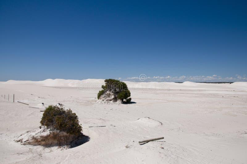 Белая пустыня - Lancelin - Австралия стоковая фотография