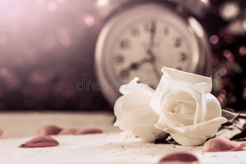 Белая роза на бумаге шелковицы на предпосылке будильника стоковые фото